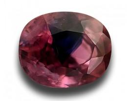 2.03 CTS | Natural Purplish Pink Sapphire |Loose Gemstone|New| Sri Lan