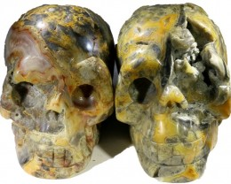 2605.00 Family Mum and Dad Jasper skulls PPP 1114