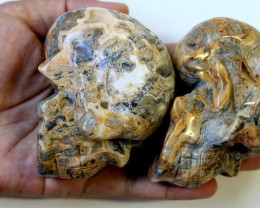 2565.00 Family Mum and Dad Jasper skulls PPP 1111