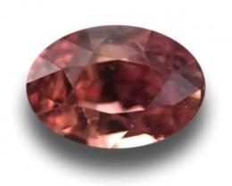 0.72 Carats | Natural Padparadscha | Loose Gemstone | Sri Lanka Ceylon - Ne
