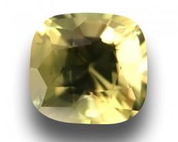 1.1 CTS | Natural Yellowish green sapphire |Loose Gemstone|New| Sri Lanka