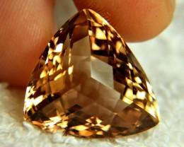 40.39 Carat Brazil VVS1 Golden Topaz - Gorgeous
