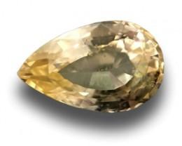 1.02 CTS   Natural yellow sapphire  Loose Gemstone New  Sri Lanka