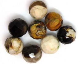 PETRIFIED WOOD BEADS, (8 PC) 64.5  CTS  NP-1194