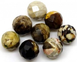 PETRIFIED WOOD BEADS, (8 PC) 66 CTS  NP-1183