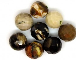 PETRIFIED WOOD BEADS, (8 PC) 65.5 CTS  NP-1180