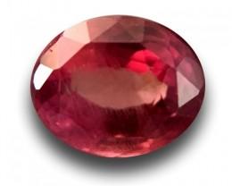 1.04 Carats|Natural Unheated Padparadscha|Loose Gemstone|Sri Lanka-Ne