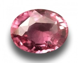 1.21 CTS | Natural Orange Pink sapphire |Loose Gemstone|New| Sri Lanka
