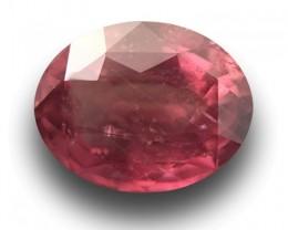 1.96 CTS   Natural Padparadscha  Loose Gemstone  Sri Lanka - New