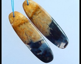Fashion Natural Palm Fossil Oval Earrings,43x13x3mm,35.5ct(17040810)