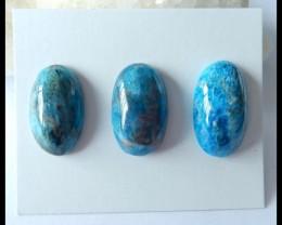 Sale 3PCS Natural Blue Apatite Cabochons,24x14x7mm,26x15x8mm,72ct(17041005)