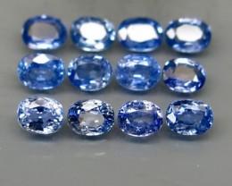 Natural Blue Sapphire - 4,55 carats - Wholesale Lot