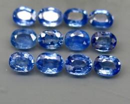 Natural Blue Sapphire - 4,44 carats - Wholesale Lot