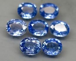 Natural Blue Sapphire - 3,69 carats - Wholesale Lot