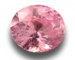 1.59 Carats| Natural Pink Orange Sapphire |Loose Gemstone|New|Srilanka