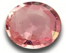 1.69 CTS|Natural Unheated Pink Orange Sapphire|Loose Gemstone|Sri Lanka - N