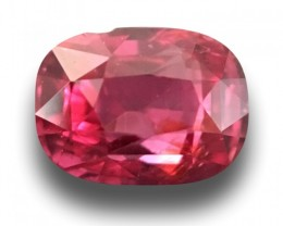 CERTIFIED Unheated Pink 1.10 cts Natural CEYLON Sapphire