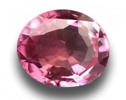 1.02 Carats   Natural  Pink Orange Sapphire   Loose Gemstone   Sri Lanka  -