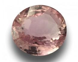 1.60 Carats| Natural Unheated Pink Sapphire |Loose Gemstone|New|Srilanka