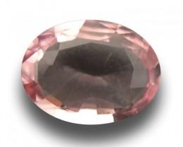 1.19 Carats| Natural Unheated padparadscha |Loose Gemstone|Sri Lanka