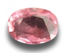 1.02 CTS | Natural Pinkish orange padparadscha |Loose Gemstone|New| Sri Lan