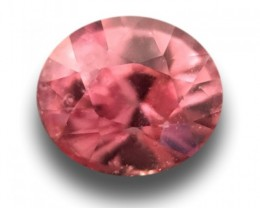 0.4 CTS | Natural Pinkish orange padparadscha |Loose Gemstone|New| Sri Lank