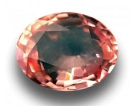 0.58 CTS | Natural Padparadscha |Certified | Loose Gemstone | Sri Lanka - N