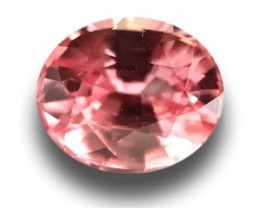 0.53 CTS | Natural Padparadscha |Certified | Loose Gemstone | Sri Lanka - N