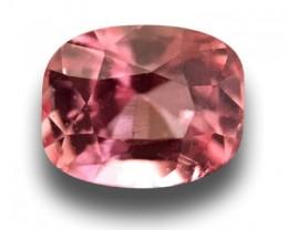 0.75 CTS | Natural Padparadscha |Certified | Loose Gemstone | Sri Lanka - N