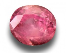 0.98 CTS Natural Pink orange sapphire |Loose Gemstone|New Certified| Sri La