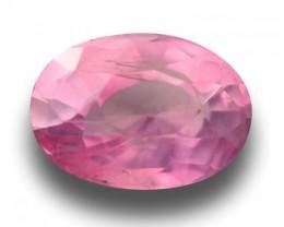 1.56 Carats | Natural Unheated Pink  Sapphire | Loose Gemstone | Sri Lanka