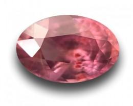 1.09 CTS | Natural Orange Purplish Pink sapphire |Loose Gemstone|New| Sri L