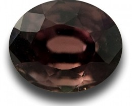 1.66 CTS | Natural brown sapphire |Loose Gemstone|New Certified| Sri Lanka
