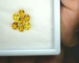 3.45 Cts Natural Canary Yellow Sapphire Oval 7 Pcs Parcel