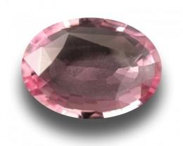 2.35 CTS |Natural Unheated Pink Sapphire | Loose Gemstone|Sri Lanka - New