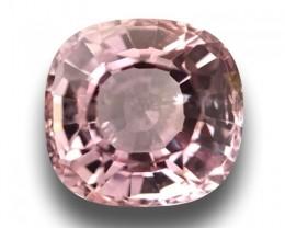 1.25 CTS Natural Pink sapphire |Loose Gemstone|New Certified| Sri Lanka