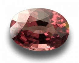 2.66 CTS|Natural garnet|Loose Gemstone|Ceylon - NEW