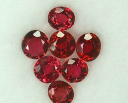 1.58 Cts Natural Vivid Red Spinel Oval 7Pcs Burmese Gem