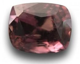 Natural Brown Sapphire   Loose Gemstone   Sri Lanka Ceylon - New