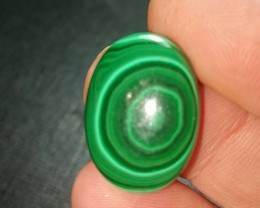 22mm Malachite bullseye cabochon AAA 17.5ct 22 by 16 by 4mm ethically sourc