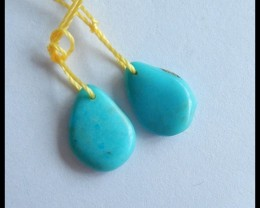 Natural Turquoise Earrings,13x10x3mm,4ct(17050807)