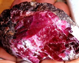 752.5 CTS HIGH QUALITY RUBY ROUGH RICH RED TBM-1129