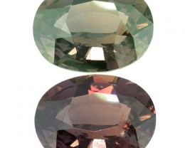 UNTREATED Ceylon Colour Changing Sapphire 2.16 Ct. (001115) Rare 100% Chang