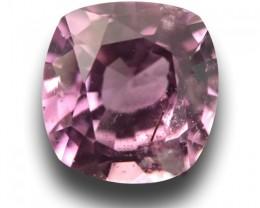 Natural Pink Sapphire|Loose Gemstone|Certified|Ceylon - NEW