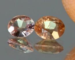 Malaya + Vanadium Garnet Madagascar Mixed Lot Deal 2pcs - NR Auctions