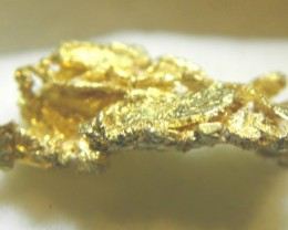 2.6 grams of crystallized  gold from Round Mountain Nevada USA