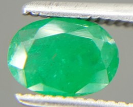 0.70 Crt Natural Emerald Faceted Gemstone (M 23)