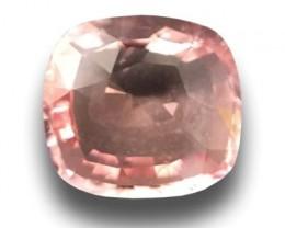 Natural Padparadscha| Loose Gemstone| Sri Lanka - New