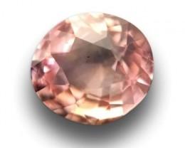 |Natural Unheated Pinkish orange Padparadscha|Loose Gemstone|Ceylon-NEW