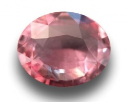 Natural Padparadscha|Loose Gemstone|Certified|Ceylon-NEW